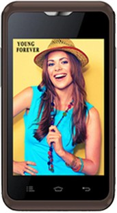Best price on Celkon Campus A359 in India