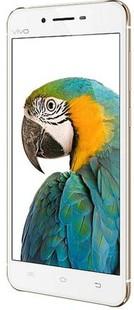 Best price on Vivo X6 Plus in India