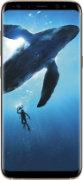 Samsung Galaxy S8 - Front