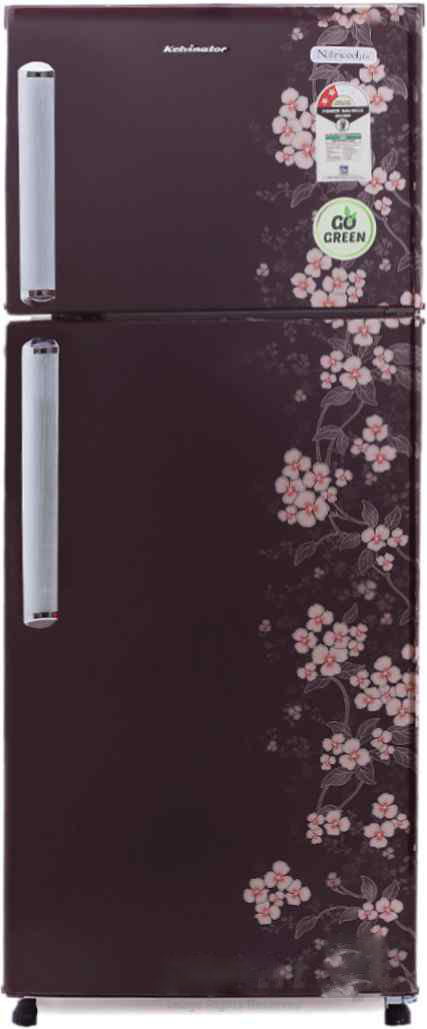Best price on Kelvinator KP202PHR 190 L 2S Double Door Refrigerator (Gulmohar) in India