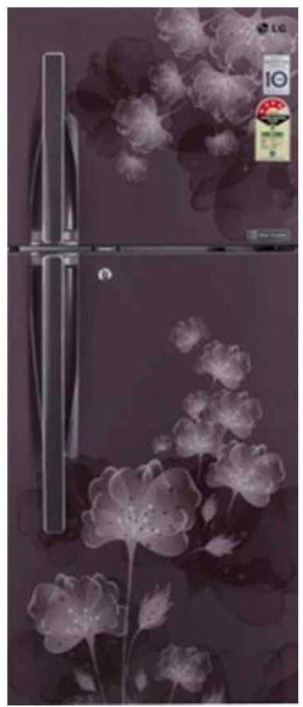 LG GL-I302RGFL 284 Litres Double Door Refrigerator