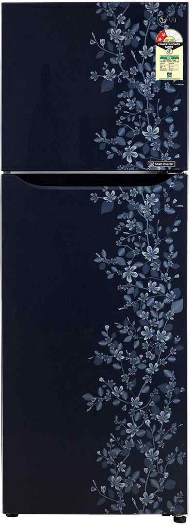 LG GL-B292SMPM/SSPM 258 Litres Double Door Refrigerator (Paradise)
