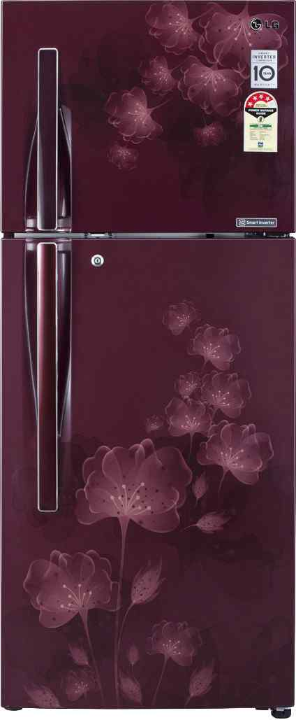 Best price on LG GL-D302JGFL/JMFL/JPFL/JSFL 285 Litres Double Door Refrigerator (Florid) in India