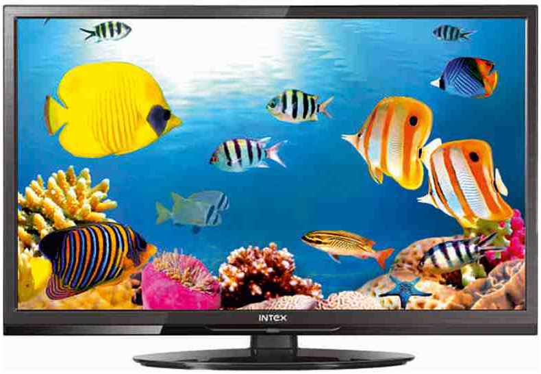Best price on Intex LED-2400 24 inch HD Ready LED TV  in India