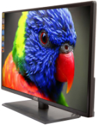 Best price on ITH Ith 24 24 Inch Full HD LED TV - Back in India