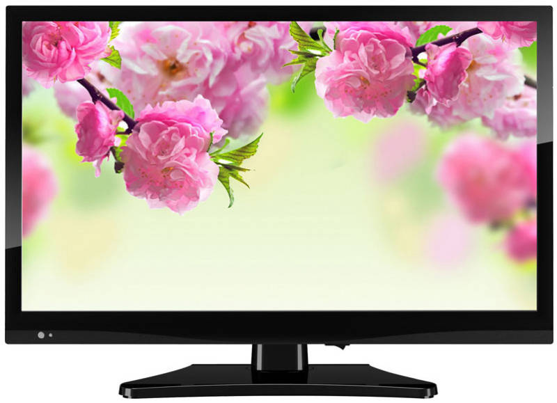 Best price on Nelson 24NL510HD 24 Inch HD Ready LED TV in India