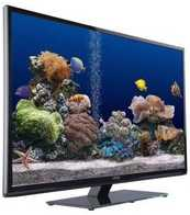 Best price on Onida LEO32MVH 31.5 Inch HD Ready LED TV  - Back in India