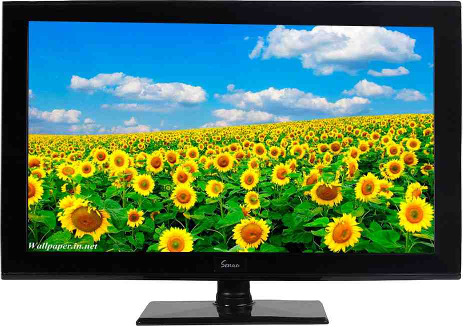 Best price on Senao LED24S241 24 Inch HD Ready LED TV  in India