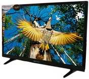 Worldtech Wt-2455 24 Inch Full HD LED TV  - Back